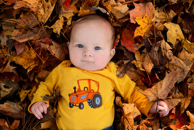 best places for family portraits in the fall  Historic Oak View County Park, Raleigh, NC
