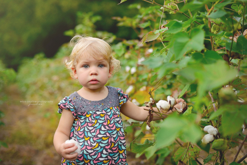 little girl in field of a cotton at historic oakview county park in raleigh nc for family portraits, fall family photos, kids portraits