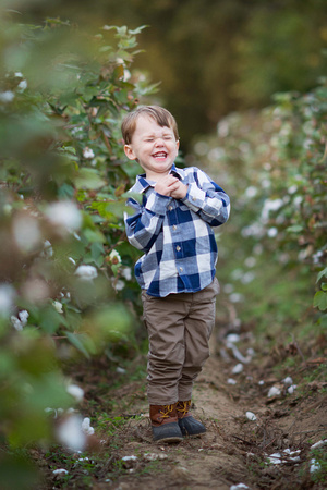 raleigh nc newborn child family photographer news, promotions, and sales