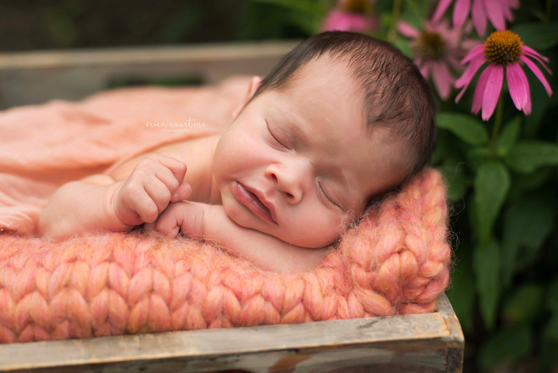 Outdoor newborn photography session at raulston arboretum in raleigh cary apex holly springs fuquay varina garner nc