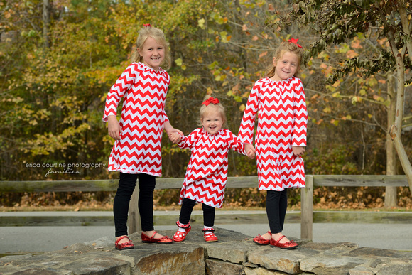 Three sisters stand among beautiful fall foliage during a family portrait session in Raleigh, NC.