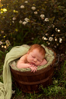 Outdoor Newborn Portraits