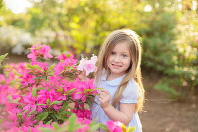 best locations for family portraits raleigh cary nc wral azalea garden