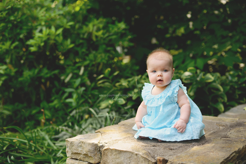 raleigh cary apex nc baby photographer a 6 month baby girl at jc raulston arboretum