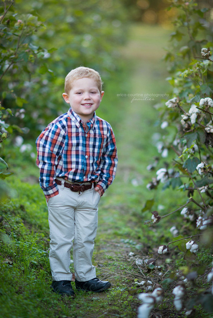 Raleigh Family Photographer - A little boy in a cotton field at Historic Oak View County Park