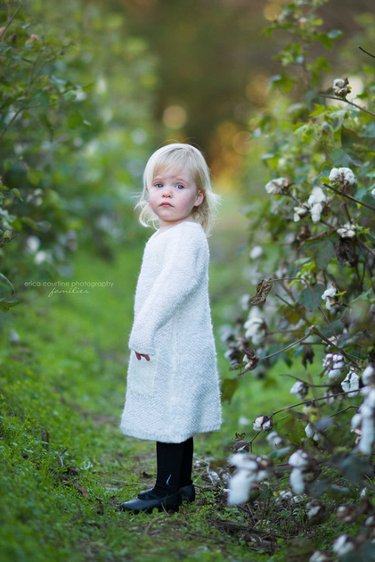 Raleigh Family Portraits - a little girl stands in a cotton field at Historic Oak View County Park.