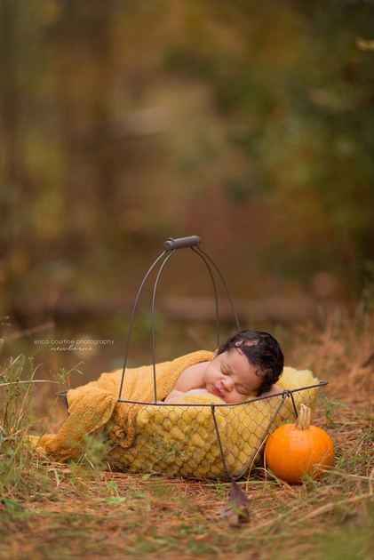 A baby poses in the woods with a pumpkin during his newborn portrait session outside of raleigh nc.