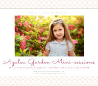 azalea mini sessions