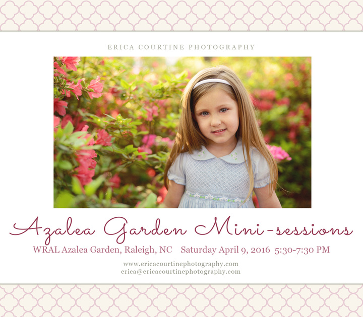 raleigh newborn maternity and family photographer mini-sessions at WRAL azalea garden spring 2016